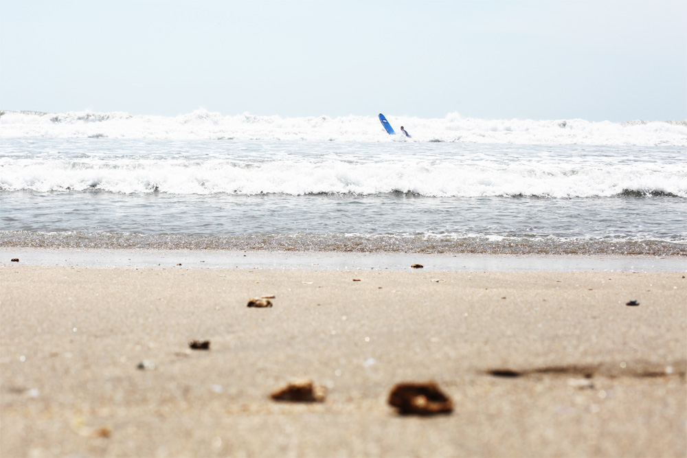 surfer2_small
